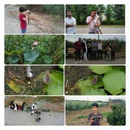 یک دوره کلاس آموزشی برای دیدن پرندگان و گیاهان تالاب نیلوفر آبی برای کودکان و جوامع محلی با حضور کارشناسان این اداره در تالاب نیلوفر آبی برگزار شد. @mazanddoe