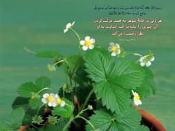 """🌱هر روز خود را با بِسْمِ اللَّـهِ الرَّحْمَـٰنِ الرَّحِيمِ آغاز کنید🌱  📆 امروز؛ چهارشنبه  ۲۲ اردیبهشت ۱۴٠٠ ۲۹ رمضان ۱۴۴۲ ۱۲ می ۲۰۲۱  👈 ما را روی  موج FM ردیف 103.5 مگاهرتز بشنوید و نظرات خود را با ما درمیان بگذارید. 📱300001035 📞27861035 🔻➖➖➖➖➖➖➖➖ 🌐 روابطعمومی #رادیو_گفتوگو 📻 FM """"103.5"""" 🆔 @radiogoftogoo"""
