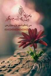 🌱با من بمان و سایه مهر از سرم مگیر       من زندهام به مهر تو ای مهربان من  #اللهم_عجّل_لولیک_الفرج  🔻🔻🔻 @jz_m.f.t