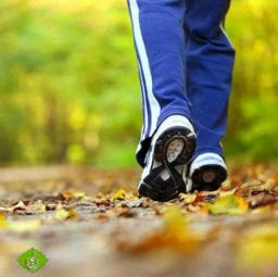 ✅ تاثیرات بی نظیر پیادهروی بر بدن⇩   🔹کاهش خطر ابتلا بهسرطان روده 🔹کاهش سریع وزن 🔹تناسب اندام  🔷کاهش افسردگی 🔹مفید برای عملکرد مغز 🔷تقویت ماهیچه های پا  ____ 📚کانال أسرار الشِفاء (طب سنتی )💠 🍏 @Teb340_ir 🌺🍃