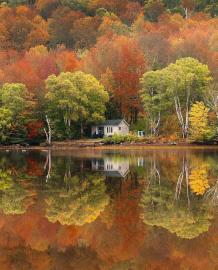 🍂پاییـز در حال آمدن است 🍁اما نه فصل خزان زرد 🍂اما نه فصل اندوه و درد 🍁فصل زیبای سادگی 🍂فصل رنگهای زیبای طبیعت 🍁فصل موسم شدید دلدادگی!    ╭┅─═ঊঈ💥ঊঈ═─┅╮   sapp.ir/harfhaenab ╰┅─═ঊঈ💥ঊঈ═─┅╯